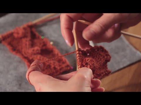 Zopfmuster stricken lernen und Raglanpullover stricken – Anleitung Intro