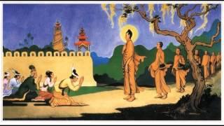 Tụng Kinh A Di Đà Diễn Kệ - Thầy Thích Huệ Duyên.mp4 - Phật Pháp Vô Biên