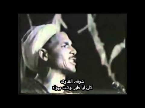 شوقى - شوقى القناوى مطرب شعبى من الصعيد حصل على شهرة واسعة ومن اشهر اغانيه السيرة الهلالية.