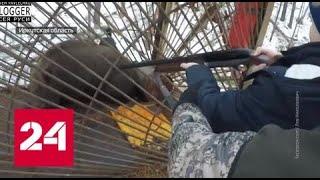 Губернатор Левченко пристреливался по беззащитным животным вместе с внуком — Россия 24