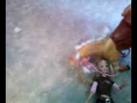 Barbie and Flicka 1