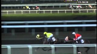 RACE 1 TAKE IT OR LEAVE IT 11/18/2014