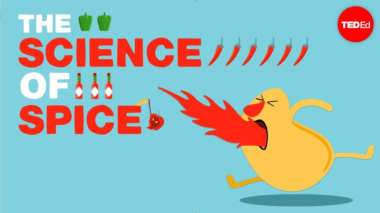 Video: What makes food spicy?