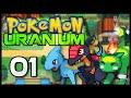 Pokémon Uranium - Episode 1 | The Professor's Test!