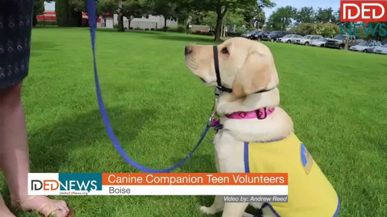 Teens give gift of trained puppies