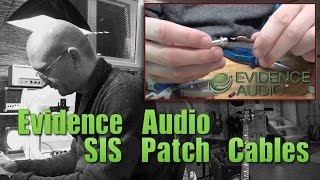Evidence Audio SIS Cables