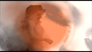 Video Bezbranná (DEMO 2012)