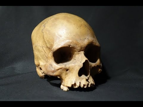 This 160 Year Old Skull Was Found In An English Pub, And Inside Lay A Disturbing Handwritten Note