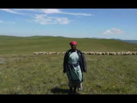 Mpumelelo Ncwadi video