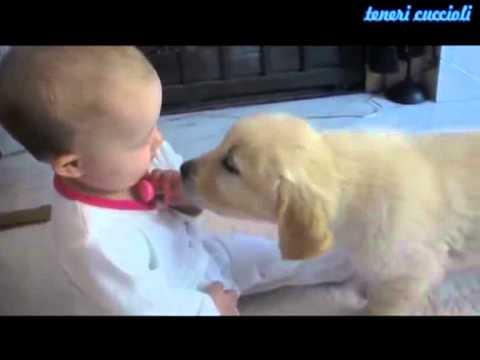 bimbo e cucciolo si incontrano per la prima volta - tenerezza!