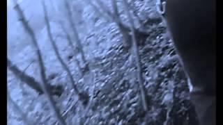 Video SKYTEASEE - Godspeed