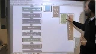 Breve explicación acerca de los niveles de organización biológica.