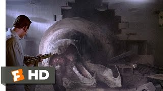 Video Tremors (8/10) Movie CLIP - The Wrong Rec Room (1990) HD MP3, 3GP, MP4, WEBM, AVI, FLV Mei 2019