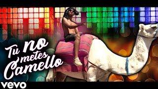 Video TÚ NO METES CAMELLO (Parodia Tu No Metes Cabra) MP3, 3GP, MP4, WEBM, AVI, FLV November 2017