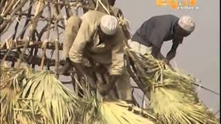 Eritrean News Arabic 11 June 2013