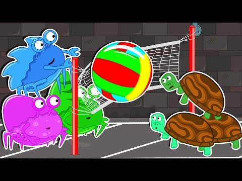 Lion Family 🦀 Rat's Lair – Volleyball Cartoon For Kids