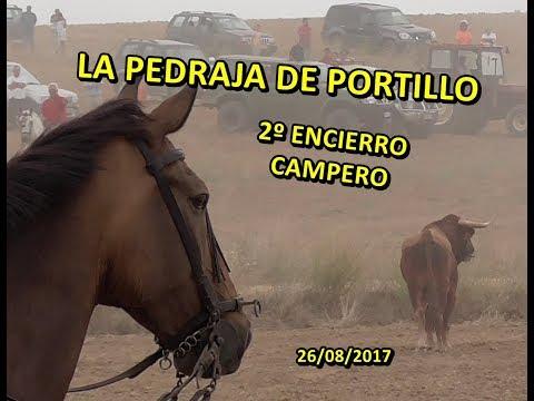 2º ENCIERRO CAMPERO, LA PEDRAJA DE PORTILLO (Va), 26/08/2017