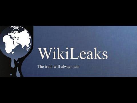 Exklusiver Wikileaks-Videobericht: »Zuerst kamen sie für Assange«