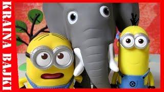 BAJKA • Happy Meal Gru Dru i Minionki vs Przyjaciele na Safarii • PIERWSZA PODRÓŻ NA SŁONIU☞Podobał się filmik? Daj ŁAPKĘ W GÓRĘ!☞Lubisz nasze filmy? NAPISZ KOMENTARZ!☞ZASUBSKRYBUJ I KLIKNIJ DZWONECZEK: https://www.youtube.com/user/aftertub...#Minionki #grudruiminionki #DespicableMe3 #minionki #minions #przyjacielenasafarii #disney #bajkadladzieci #bajka #dzieci #child  --------------------------------------------------------------------------------BĄDŹ NA BIEŻĄCO!:✔Facebook: https://www.facebook.com/KrainaBajki2✔Instagram: https://www.instagram.com/kraina_bajki/Jeśli spodobał Ci się odcinek zostaw nam łapkę w górę i daj subka - będzie nam bardzo miło i to dla nas bardzo ważne. Bardzo będziemy się cieszyć jeżeli udostępnisz również ten film na swoim FB. Napiszcie nam w komentarzu jakie mamy nagrywać kolejne filmy! Miłego oglądania.... :)KONTAKT: krainazabawek1@gmail.com
