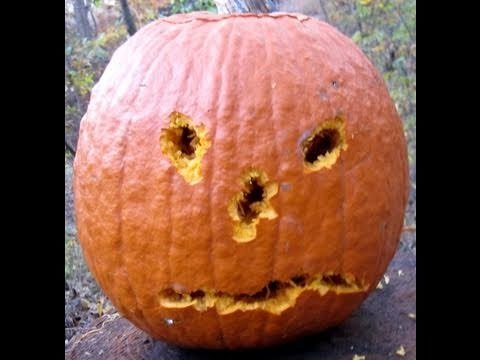 Pumpkin Carving II