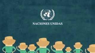 CONVENCION NACIONES UNIDAS DERECHOS DE LAS PERSONAS CON DISCAPACIDAD