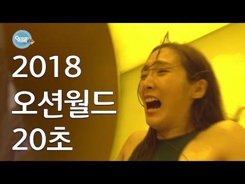 2018 비발디파크 오션월드 (20초)