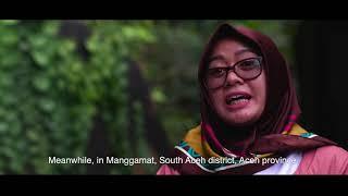 Tujuh Belas Tahun Memantau Hutan Indonesia