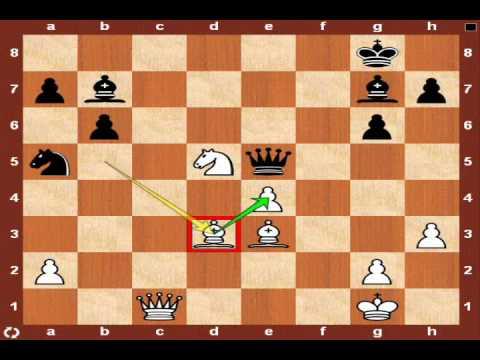 World Chess Championship 2010: Topalov vs. Anand – Game 10