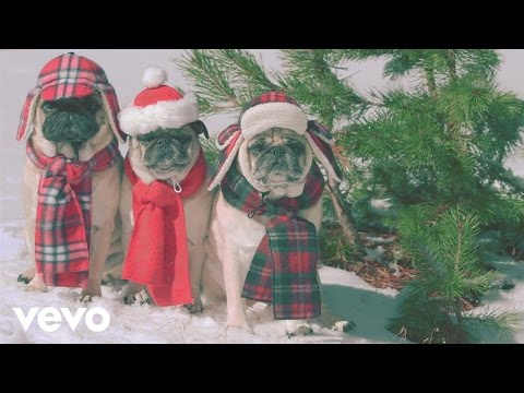 Look At These Cute Disguised Pugs For She  Him  s  Winter