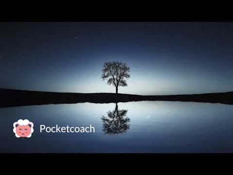 Pocketcoach Observer Breathe Allow Practice