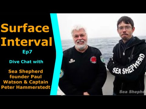 Ep #7 Saving the oceans with Paul Watson & Peter Hammerstedt - Whale Wars & Chasing the Thunder