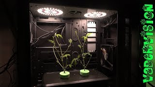 PC Micro Grow Build Out Maiden Voyage! by VaderVision