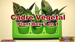 Cadre Végétal Plant'Box 3en1
