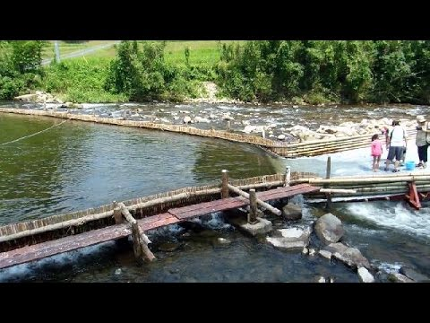 gratis download video - Easy-Fishing-in-the-Mountains-of-Japan
