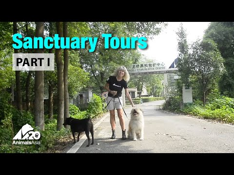 Sanctuary tour part I