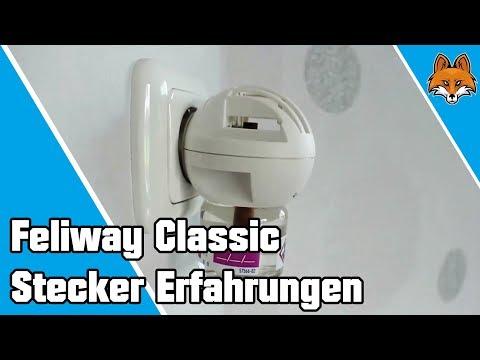 Feliway Classic Stecker Erfahrungen 🐱