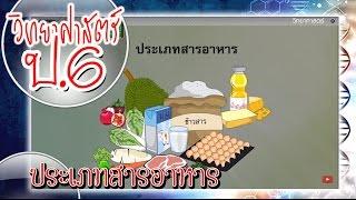 สื่อการเรียนการสอน ประเภทสารอาหาร ป.6 วิทยาศาสตร์