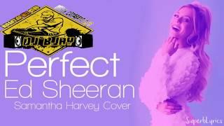 Download Lagu Perfect Cover ( Slow Jam DjBRYAN JAMES ) Mp3