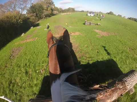 Herefordshire Team Chase Intermediates 2018- Hope Springs Eternal - King Koda