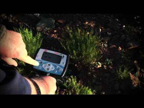 Getting Started with the Minelab X-TERRA 705 Gold Pack Detector