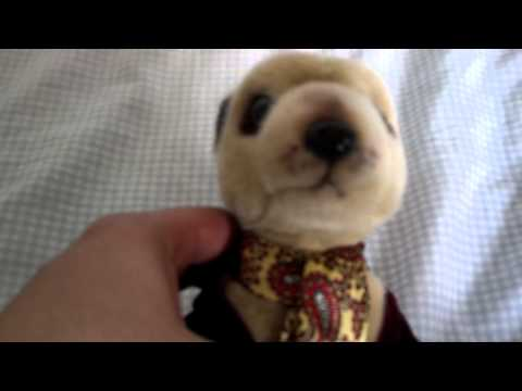 plush meerkat cuddly toy review