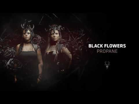 Black Flowers - Propane