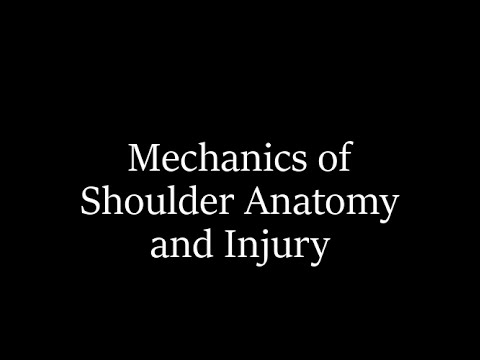 Mechanics of Shoulder Anatomy and Injury with Dr. Herbold