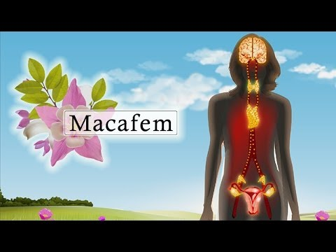 How Macafem Works?