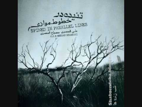 Ali Ghamsari - Taknavazi Tar, Taar