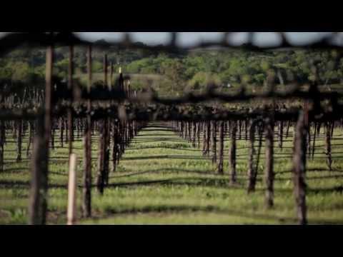 Improving Pump Efficiency in Vineyards