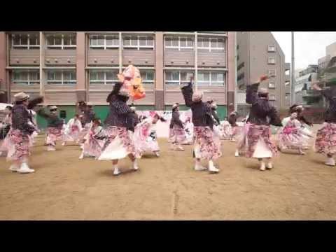 ゑにし 恋アゲハ 京都さくらよさこい 2015 御池中学校