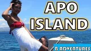 Dumaguete Philippines  City pictures : Apo Island Snorkelling, Harolds Dive Center Dumaguete, Philippines S2 Ep17
