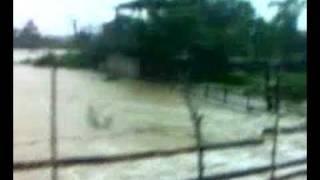 Video Banjir Di Taman Alya uitm Mache MP3, 3GP, MP4, WEBM, AVI, FLV September 2018