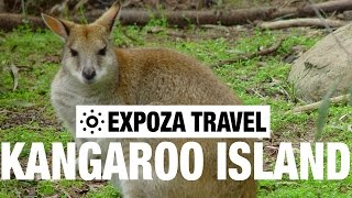 Kangaroo Island Australia  City pictures : Kangaroo Island (Australia) Vacation Travel Wild Video Guide
